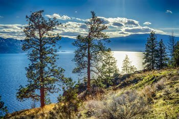 Peachland real estate